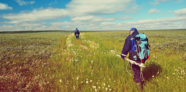 Fifth ecological expedition «Yamal-2013»